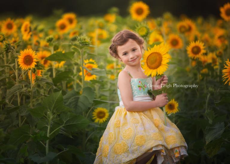 Sunflowers-Genie Leigh Photography