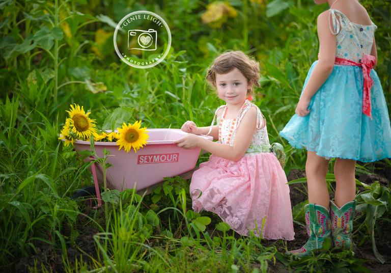 Sunflowers Genie Leigh Photography