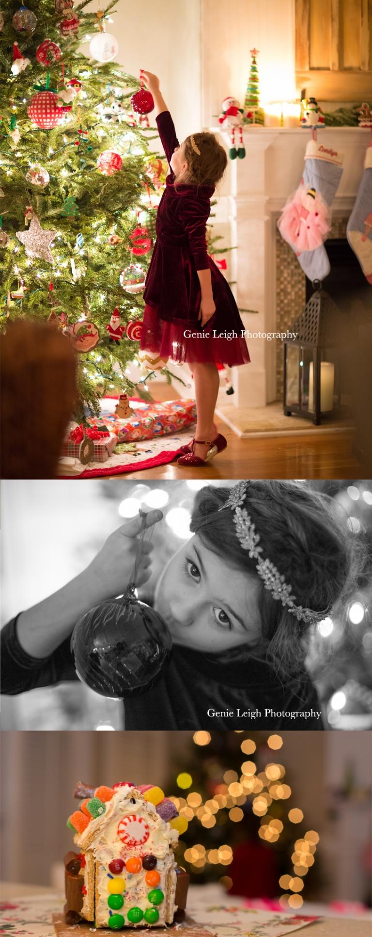 Genie Leigh Photography Holiday Joyfolie Dress, Reign