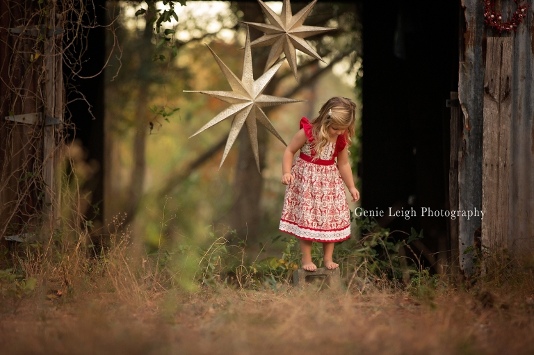 Genie Leigh Photography, Holiday Star